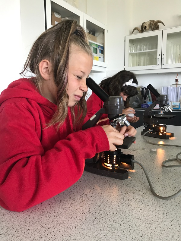 P7 pupils get a taste of study at Inverness College UHI